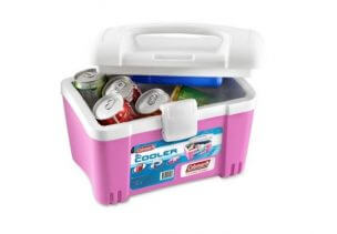 Top 10 Best Cooler Boxes to Buy Online in the Philippines 2018