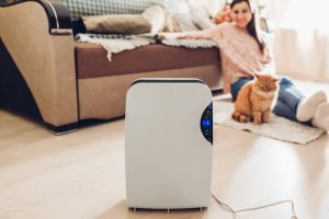 Stationary Humidifiers for Bigger Rooms