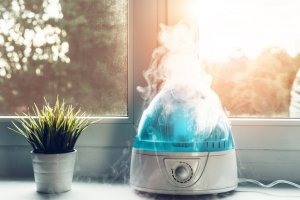 Ultrasonic Humidifier for a Quiet Operation