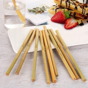 6.Bamboo Straw Set - Biodegradable and Eco-friendly, By Gaean